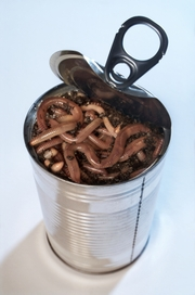 Can_of_worms_3